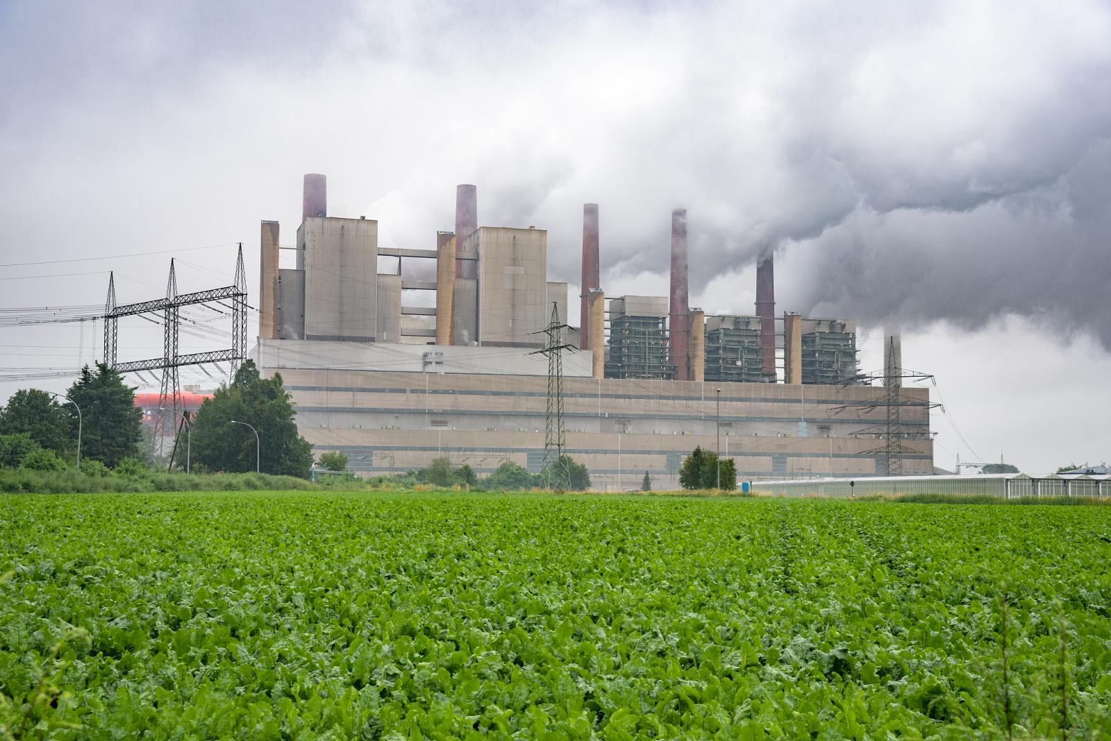 我国进一步深化燃煤发电上网电价市场化改革